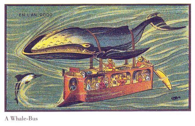 whale-bus-apisteuta