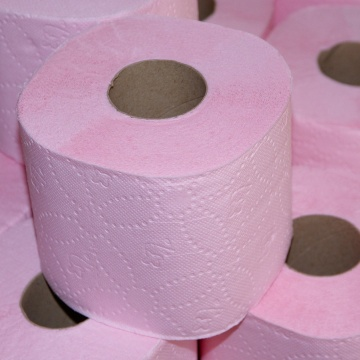 toilet-paper-apisteuta